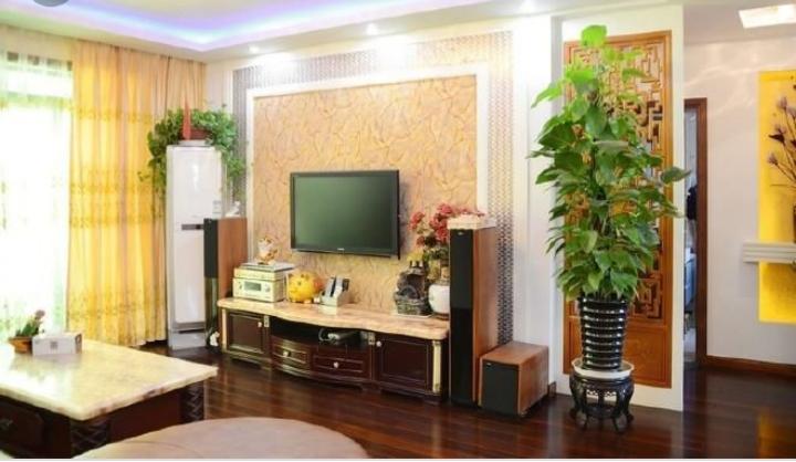 Trang trí cây xanh trong phòng tạo sự gần gũi với thiên nhiên
